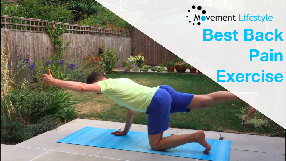 The Most Important Exercise For Back Pain