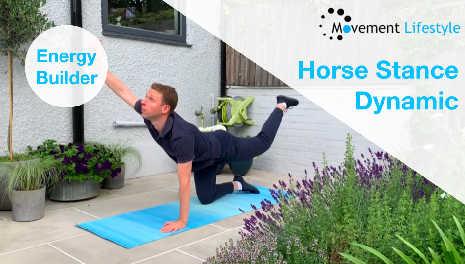 Horse Stance Dynamic